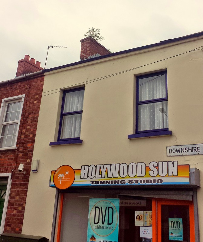 Holywood, County Down, BT18 9LY Builders Roofers Ceiling Repairs Belfast Bangor Helens bay