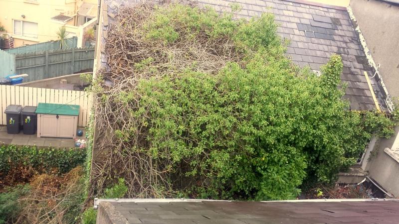 Holborn Avenue, Bangor, Down, BT20 5ET Roofs Roofers Repairs Ceilings Newtownards Donaghadee