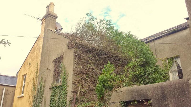 Holborn Avenue, Bangor, Down, BT20 5ET Builders Roofers Ceilings Belfast