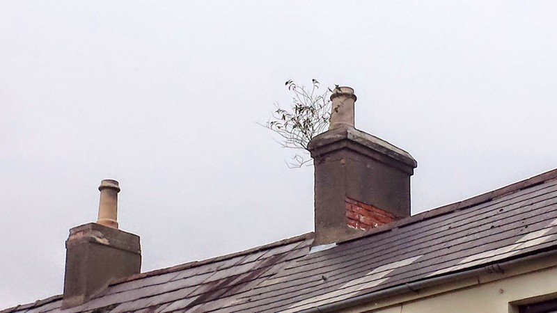 Holywood, County Down, BT18 9LY Newtownards Bangor Roofers Roofing Belfast Building & Roofing
