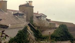 Newtownards BangorBelfast Roofers Builders