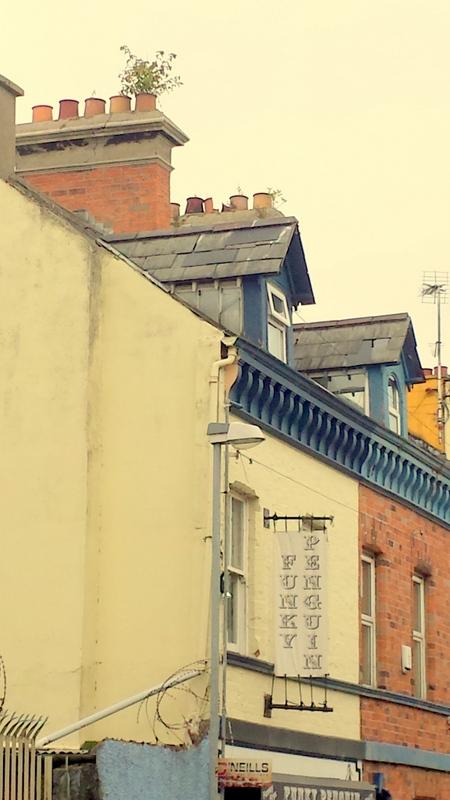 Funky Penguin KING STREET, BANGOR BT20 3AH Builders Roofers Ceilings Belfast Holywood Helensbay